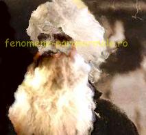 Pilda călugărului Iuliannis