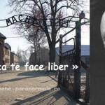 Fritz Haber sau Știință fără Conștiință