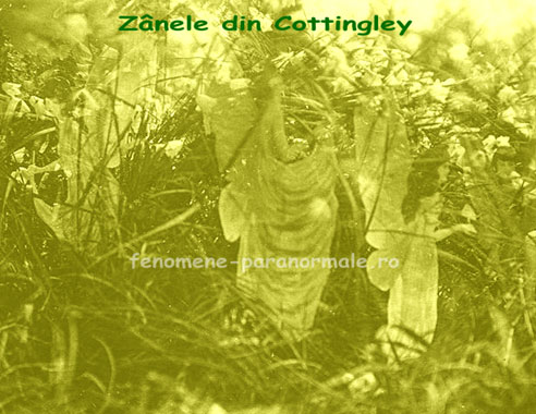 Zânele din Cottingley
