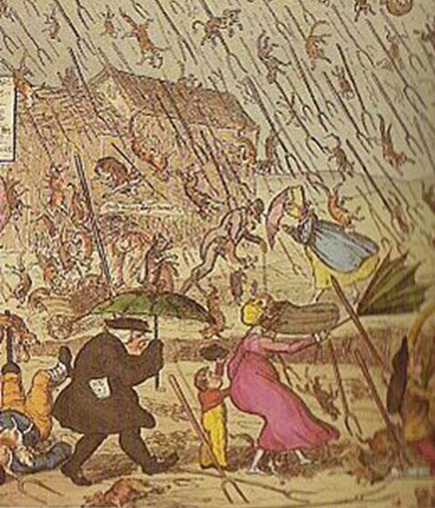 Ploaia cu animale